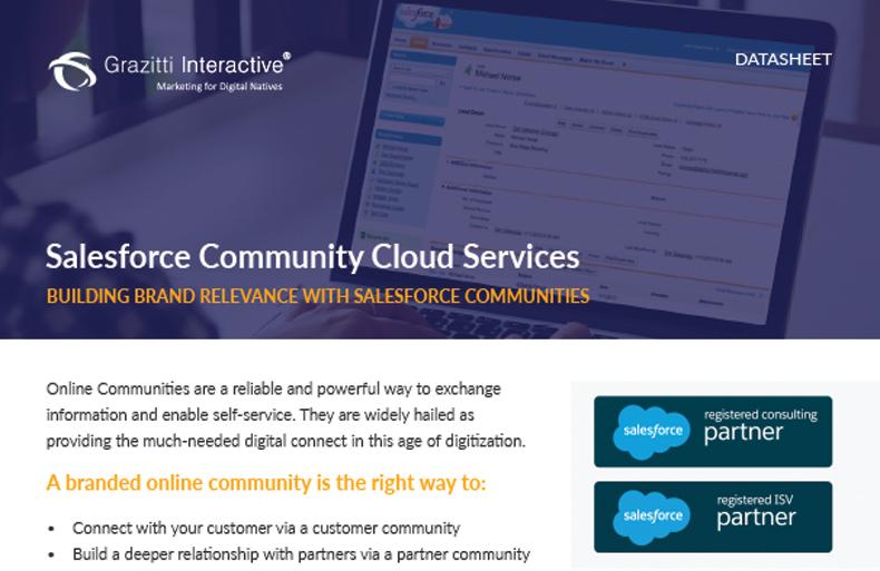 Salesforce Community Cloud Services
